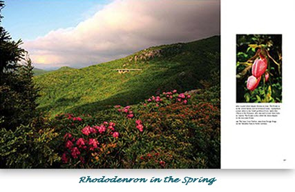 Pictures of the Blue Ridge Parkway