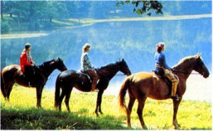 horseback riding in va