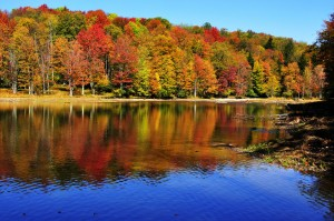 fall vacations in virginia