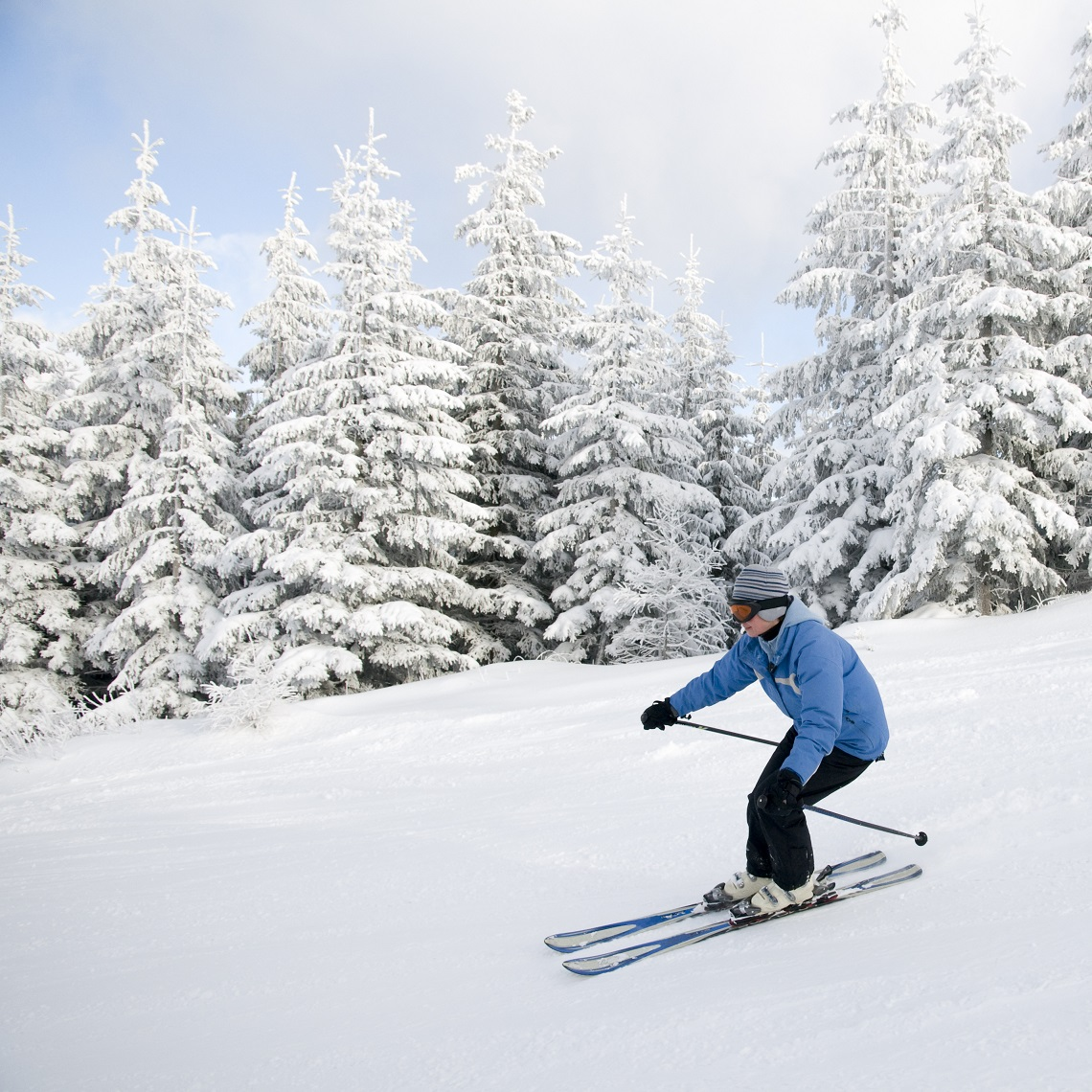 wintergreen resort & massanutten ski resort trips
